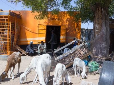 Senegal Street Life (2)