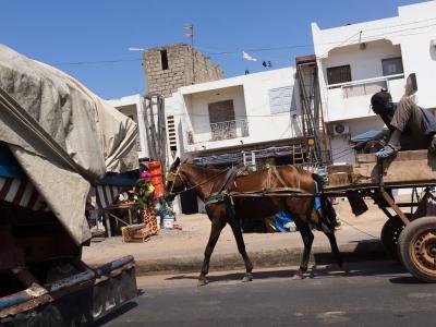 Senegal Street Life (3)