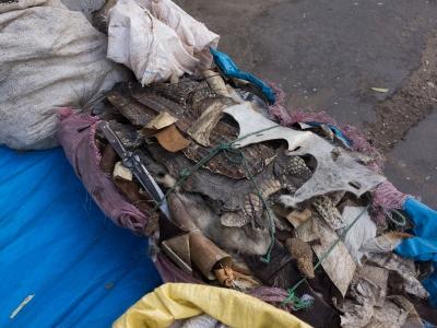 Senegal Street Life (8)